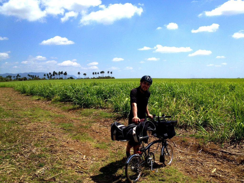 Lovely spot for a pee break - sugarcane field.