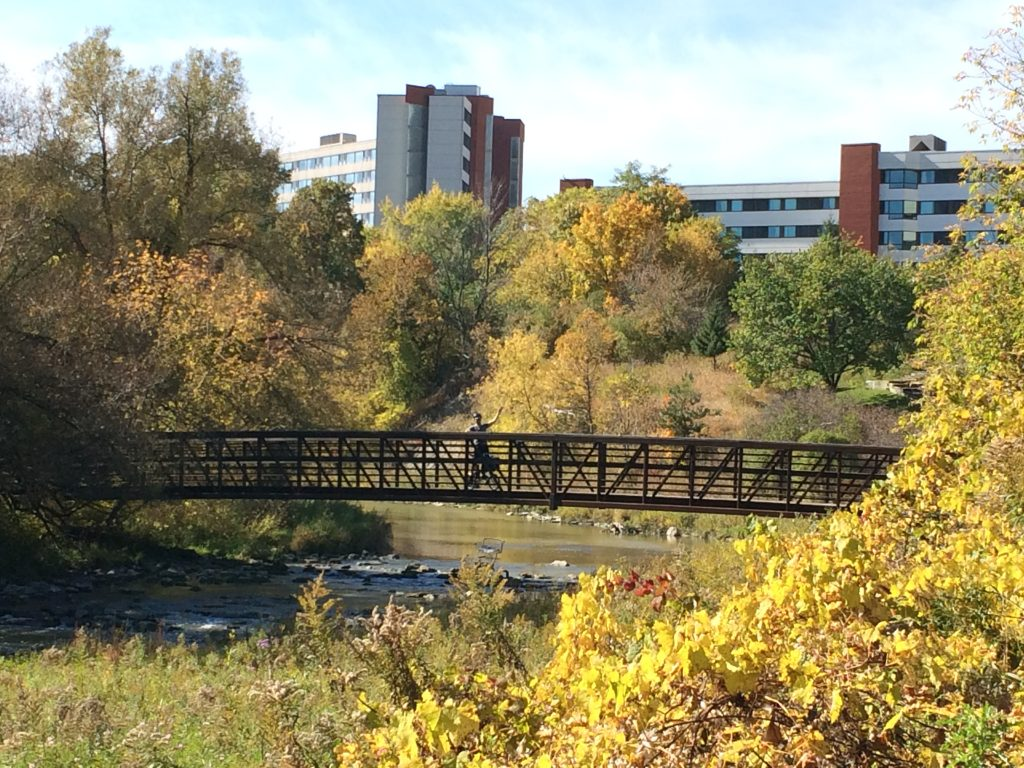 Bridge over Humber River, Toronto