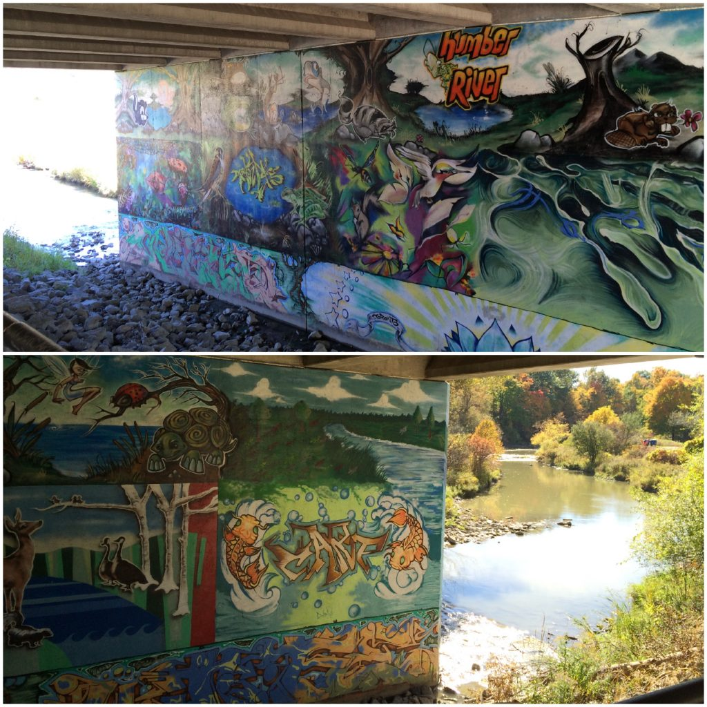 Graffiti art, Humber River Trail, Toronto