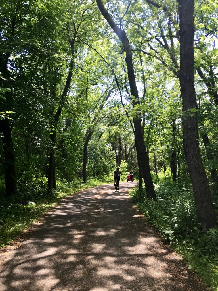 Wooded trails through the west side of Marie Curtis Park. Mississauga, Ontario, Canada.