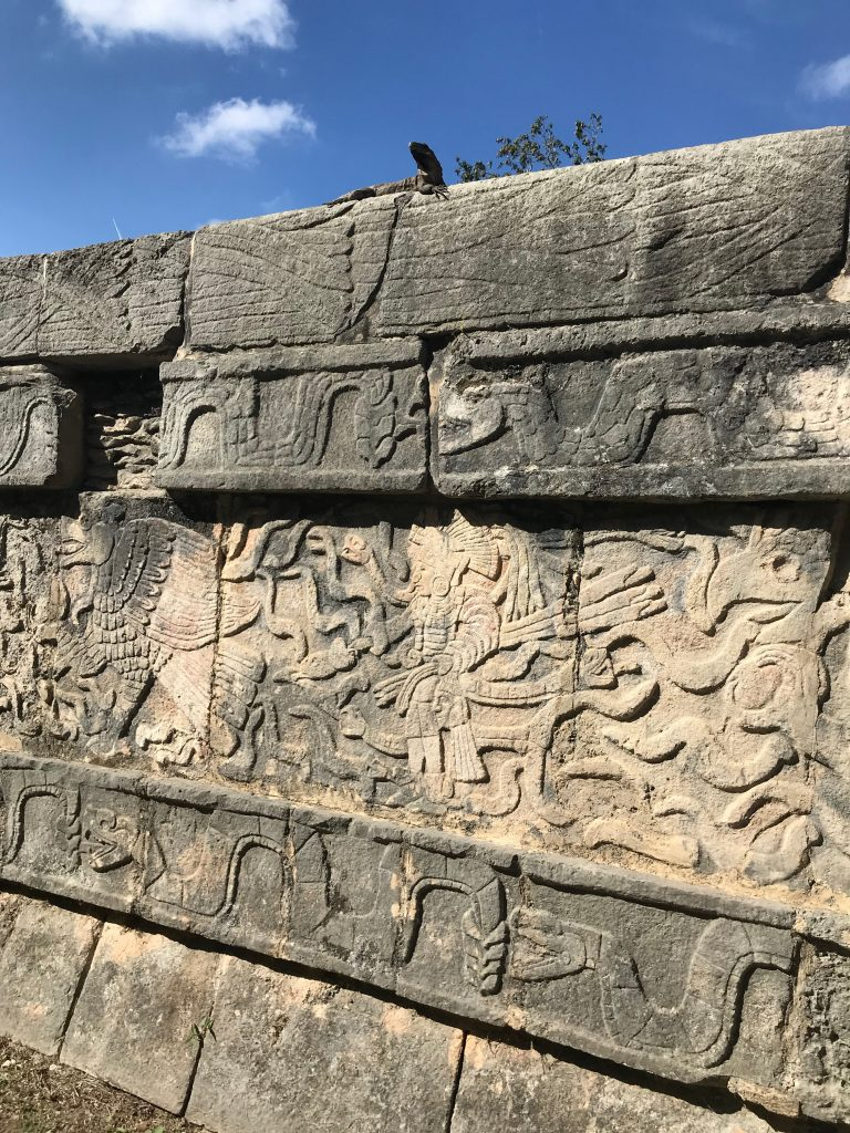 An iguana posing with the carvings of serpents, eagles and warriors. Chichen Itza, Mexico