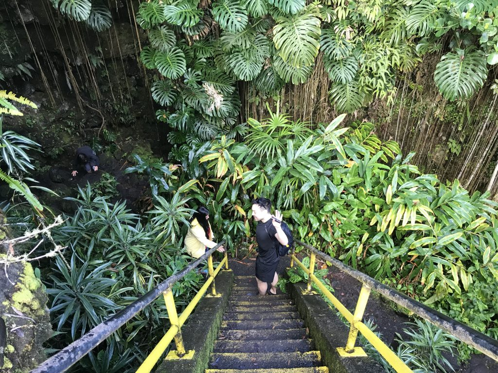 Steep stairs down to Kaumana caves.