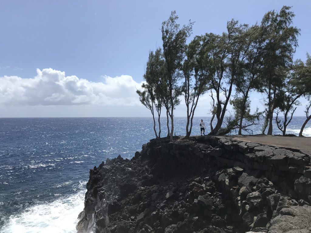 Incredible view from cliffs at Mackenzie State Park. Puna, Hawaii