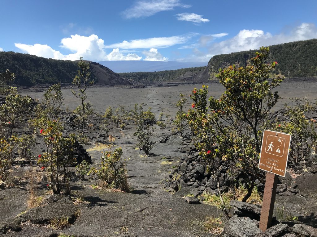 Start of trail from east side of Kilauea Iki Crater. Volcanoes National Park, The Big Island, Hawaii